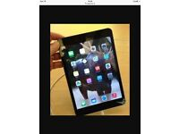 iPad mini 3 wifi 64gb 6 months old with case