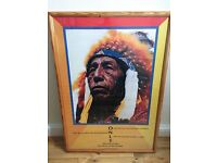 Indian Chief picture