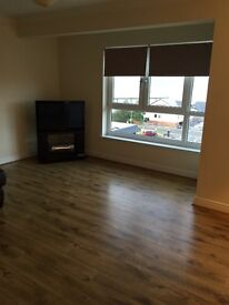 New build flat to rent