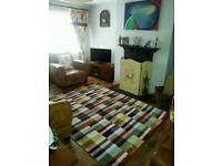 Beautiful Extra Large Viscose Next Rug Carpet