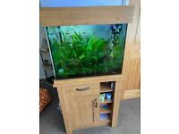 Aqua One 110 Litre Fish Tank and Stand. SOLD