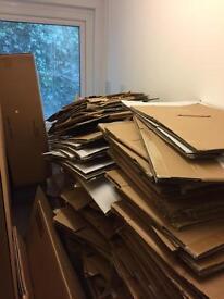 Cardboard Boxes free torquay - Need gone ASAP