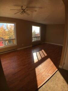 Beautiful One Bedroom Apartment in Minnow Lake-Coin Laundry