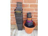 Various size plant pots