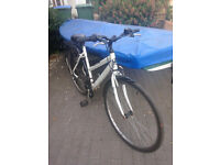 Lady's bike for sale (S/M)