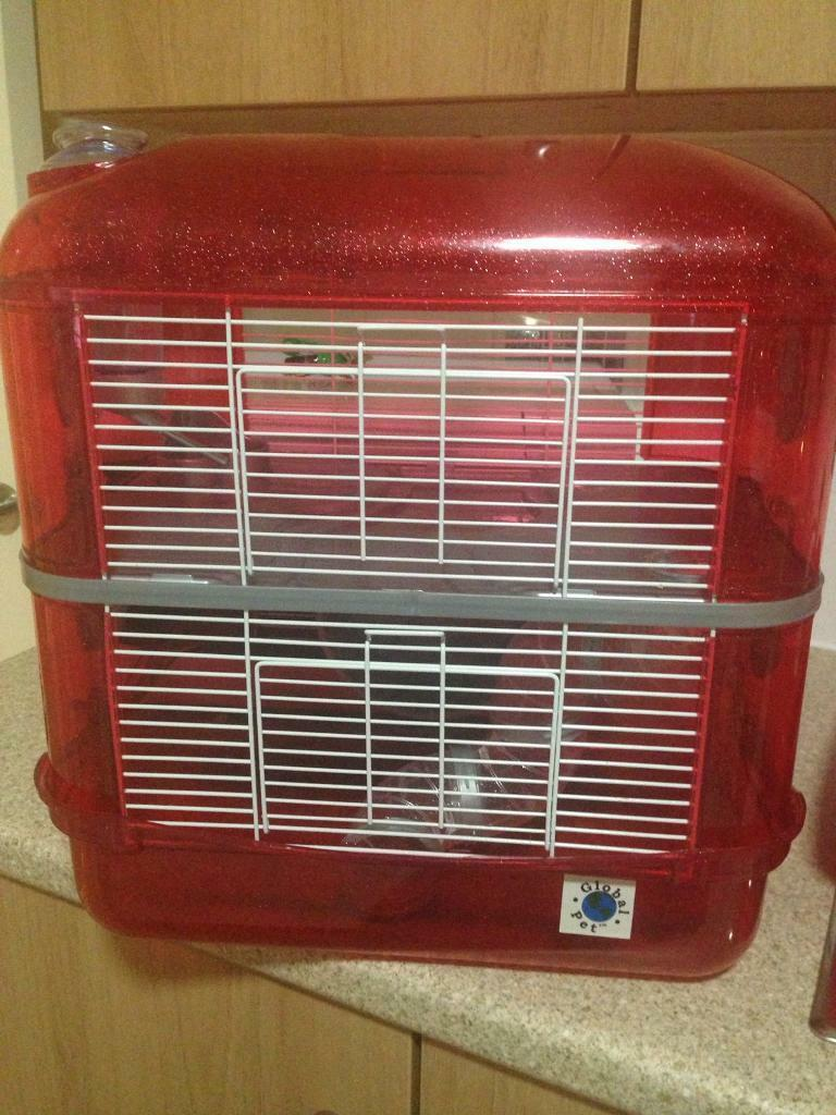 2 tier hamster cage, 2 weeks old red & white