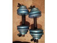 Dumbbells weights set 26 kg