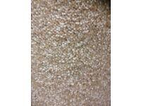 Carpet/Vinyl/LVT fitting
