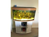Marine tank complete with fish stand and many accessories