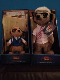 Meerkats Bogdan and Sergel
