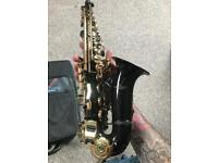 Sakkusu alto saxophone
