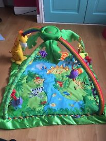 Fisher price jungle gym playmat
