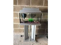 60l fish tank 2 ft full set up with stand filter heater light gravel ornament all clean and all work