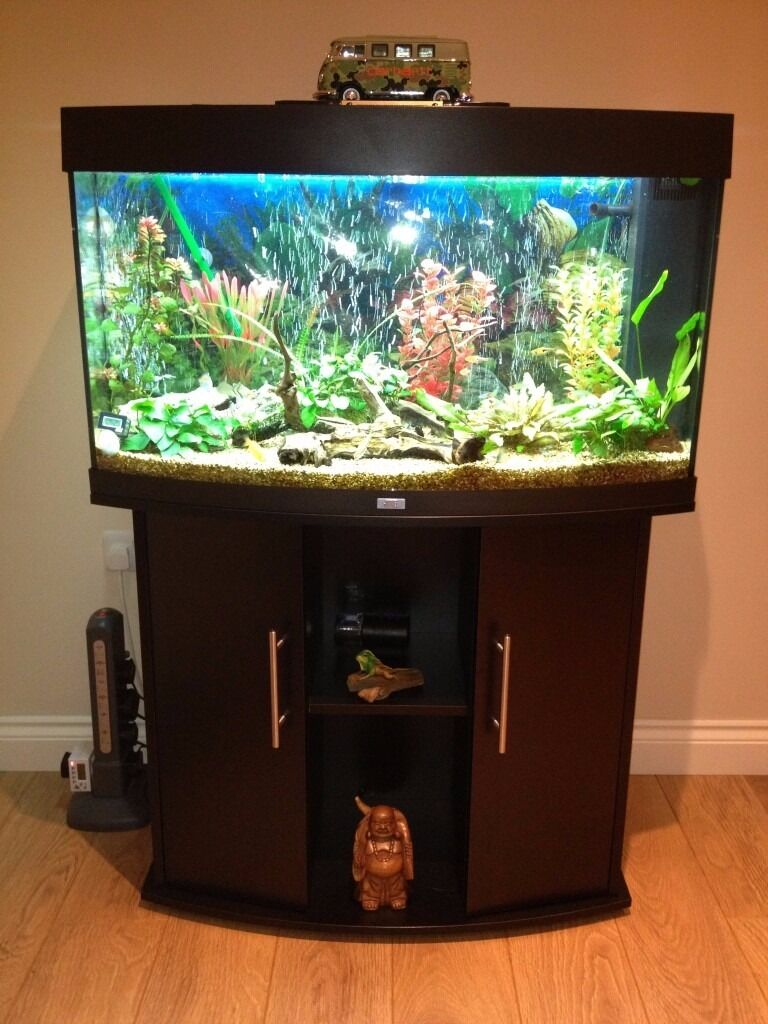 juwel vision 180 litre fish tank aquarium black cabinet lights filter heaters pump etc. Black Bedroom Furniture Sets. Home Design Ideas