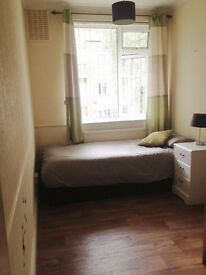 Nice and sunny single room in Crouch Hill (Finsbury Park)