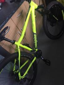Mint VooDoo bike