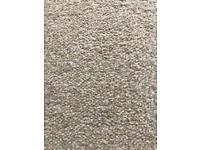 """Carpet for sale 9.5"""" X 11.3"""""""