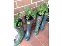 Welly boot planters