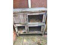 *FREE* DOUBLE RABBIT HUTCH