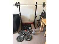 Weights and barbell plus squat and dip stand. Plus pull up bar dumbbells and grips.