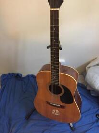 Vantage guitar vis-11ga/n
