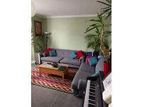 Double Room in friendly House Share (Bishopston) Gay & Cat Friendly £380pcm