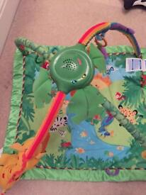 Fisher Price Baby Gym / Playmat