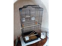 Budgie and cage for sale. White and blue budgie. Cage size 13 inches x 17 inches x 36 inches