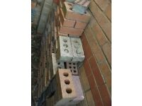 SELECTION OF BRICKS - 200+ INCLUDED IN SALE