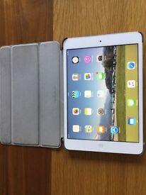 iPad mini retina 16g