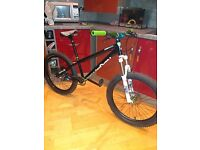 Custom dmr reptoid jump bike