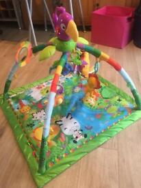 Fisher Price deluxe rainforest playmat / play gym