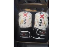 Maya Grain Leather Gel Boxing Gloves MAXX. 16 oz and focus pads.