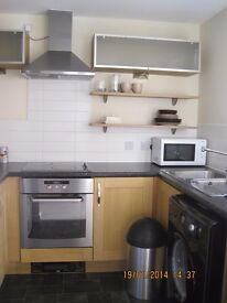 Beautiful 1 bedroom furnished apartment with car parking.