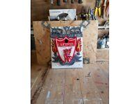 Liverpool F C bird box