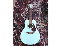 Amazing Vintage acoustic guitar - Elvis Style