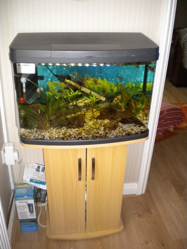Cabinet aquarium fish tank tropical - Tropical Fish Tank Working Complete Including Wooden Cabinet And Assessories