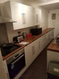 Lovely 4 bedroom house share on Worcester Street TS1