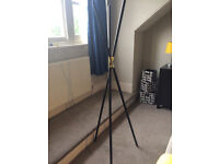 Black Wood and Gold Decorative Coat Stand