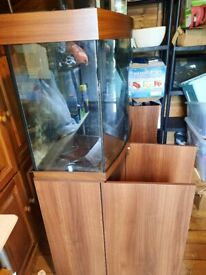 Big fish tank with cupboards and accessories