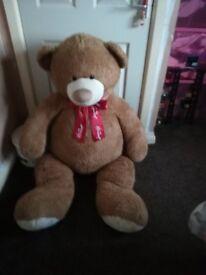 Hamley's Large Bear