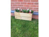 Timber/ Wooden Planters (plants not included) £9.50 Each
