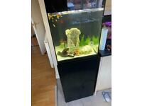 135L CUBE FISH TANK AND CABINET AQUARIUM,