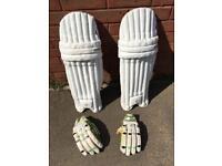 Cricket Pads & Gloves kookaburra