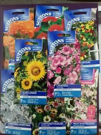 Assorted packs of Flower Seeds Expirys 2014 - 2016 25p each