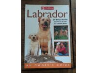 Labrador an Owner's Guide