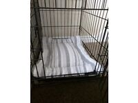 Small Dog / Puppy Crate (approx 3 months old)