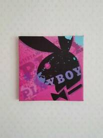 Playboy canvas