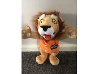Lion king lion