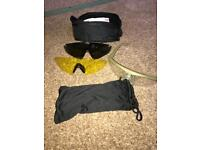 Revision Sawfly glasses / eye protection